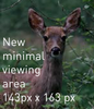 deer-example3.png