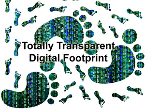 Transparent Footprint Matrix3.jpg