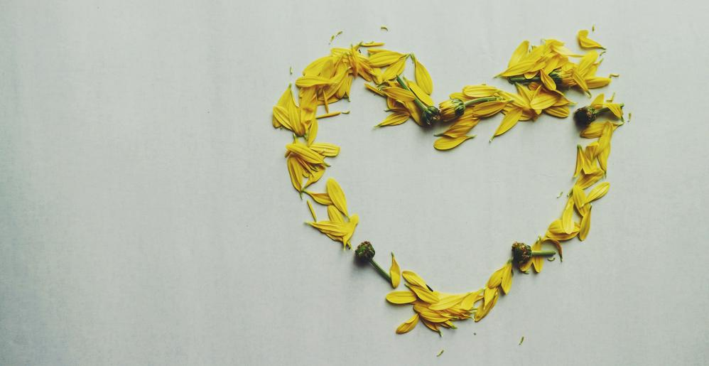 heart-shape-yellow-flower-petals-947925.jpg