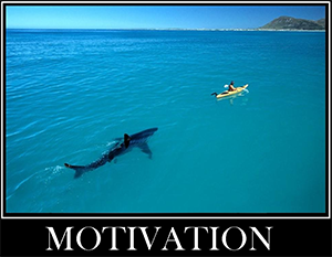 motivation shark px300.png