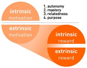 int + ext motivation vs reward px300.PNG
