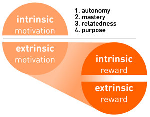 the relationship between motivation and reward