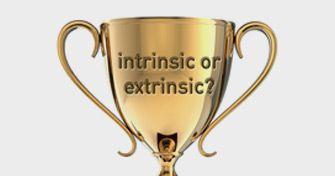 extrinsic_intrinsic-335x176.jpg