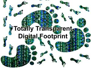 Transparent Footprint Matrix3.jpg