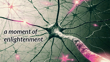 neurons enlightenment 350px.png