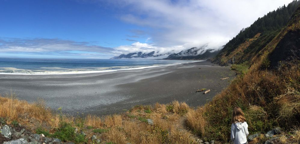 Lost Coast - Shelter Cove3 CA.jpg