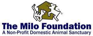 Milo Logo313.png