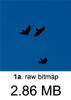 Birds+BlueSky_raw.png